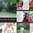Gracious Living at Oak Alley Plantation